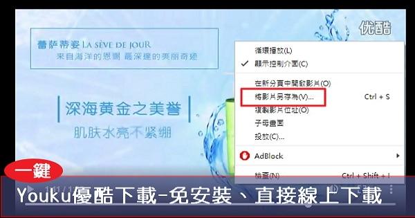 【Youku下載】優酷視頻下載-免安裝、直接線上下載!(尚支援其它大陸視頻下載)